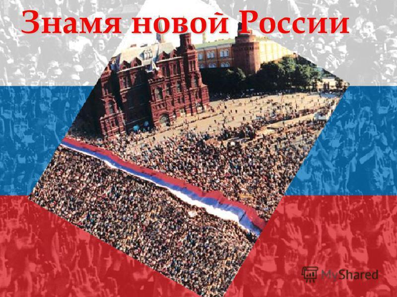 Знамя новой России
