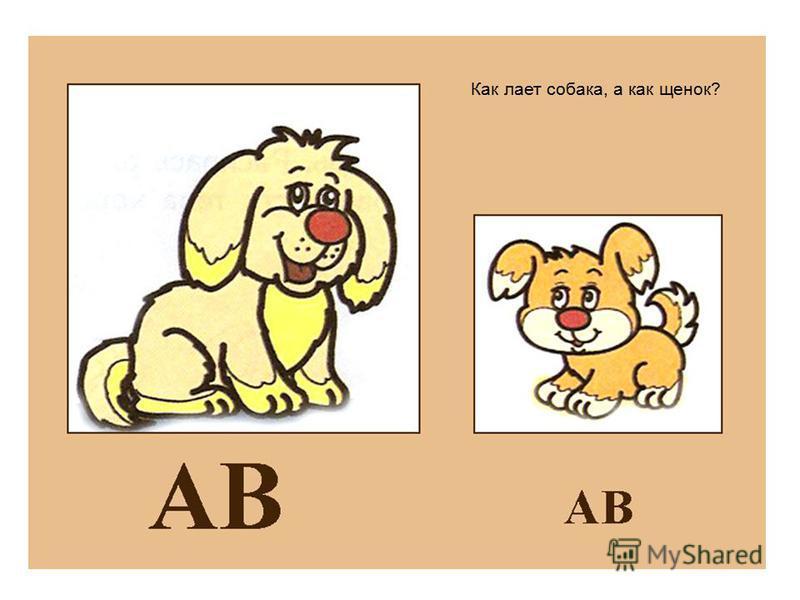 Как лает собака, а как щенок?