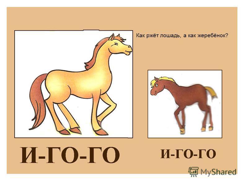 Как ржёт лошадь, а как жеребёнок?