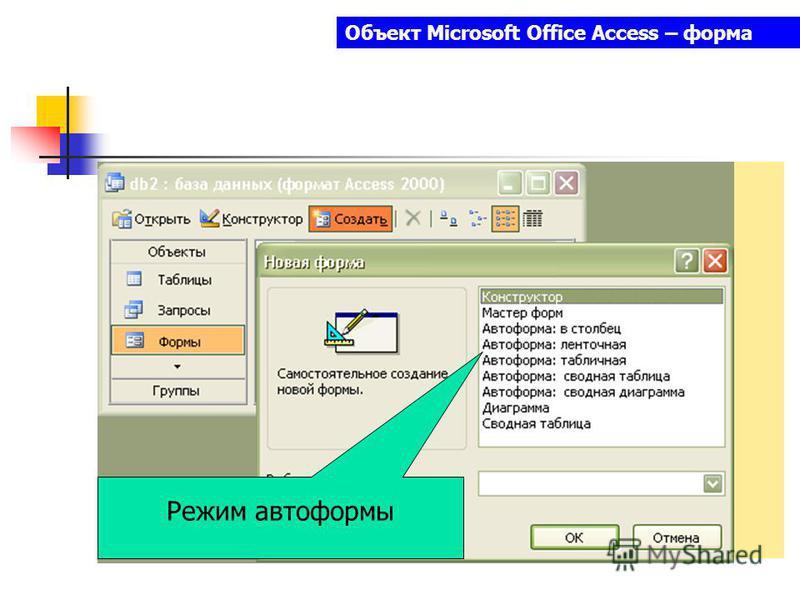 Объект Microsoft Office Access – форма Режим автоформы