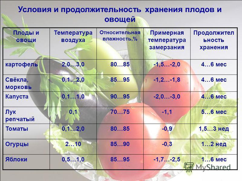 Плоды и овощи Температура воздуха Относительная влажность,% Примерная температура замерзания Продолжител ьность хранения картофель 2,0…3,080…85-1,5…-2,04…6 мес Свёкла, морковь 0,1…2,085…95-1,2…-1,84…6 мес Капуста 0,1…1,090…95-2,0…-3,04…6 мес Лук репч