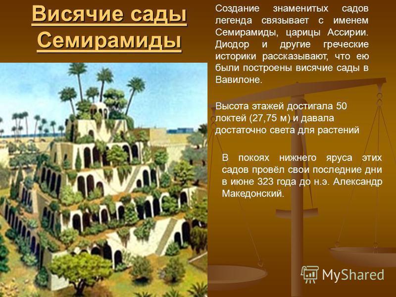 Висячие сады Семирамиды Висячие сады Семирамиды Создание знаменитых садов легенда связывает с именем Семирамиды, царицы Ассирии. Диодор и другие греческие историки рассказывают, что ею были построены висячие сады в Вавилоне. Высота этажей достигала 5