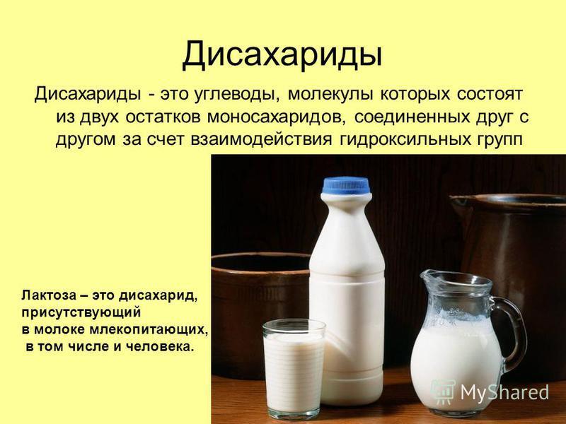 Дисахариды Дисахариды - это углеводы, молекулы которых состоят из двух остатков моносахаридов, соединенных друг с другом за счет взаимодействия гидроксильных групп Лактоза – это дисахарид, присутствующий в молоке млекопитающих, в том числе и человека