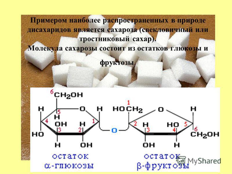 Примером наиболее распространенных в природе дисахаридов является сахароза (свекловичный или тростниковый сахар). Молекула сахарозы состоит из остатков глюкозы и фруктозы.