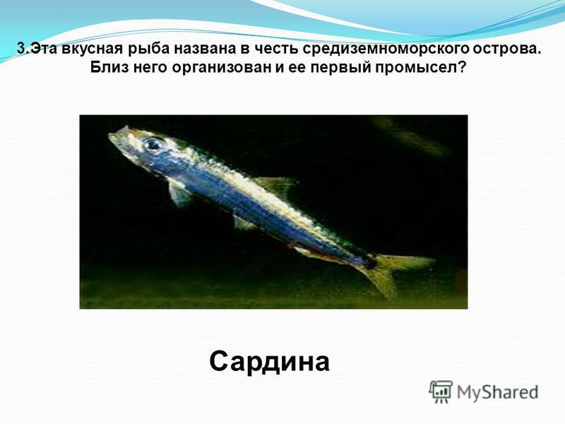 3. Эта вкусная рыба названа в честь средиземноморского острова. Близ него организован и ее первый промысел? Сардина
