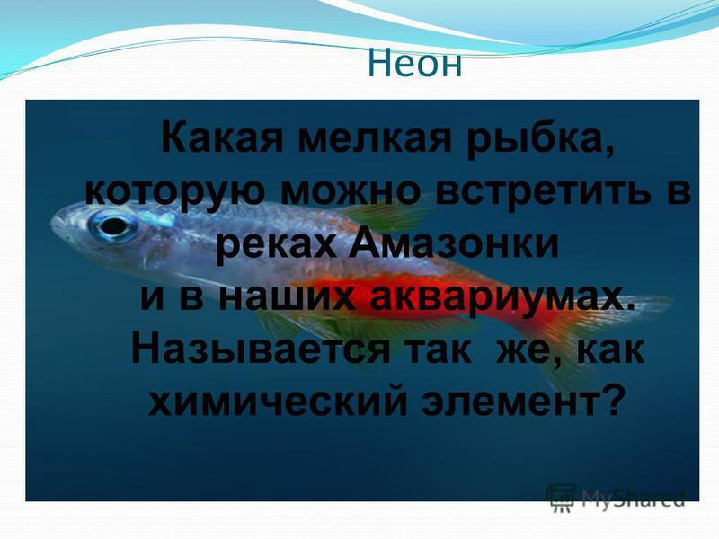 Неон Какая мелкая рыбка, которую можно встретить в реках Амазонки и в наших аквариумах. Называется так же, как химический элемент?