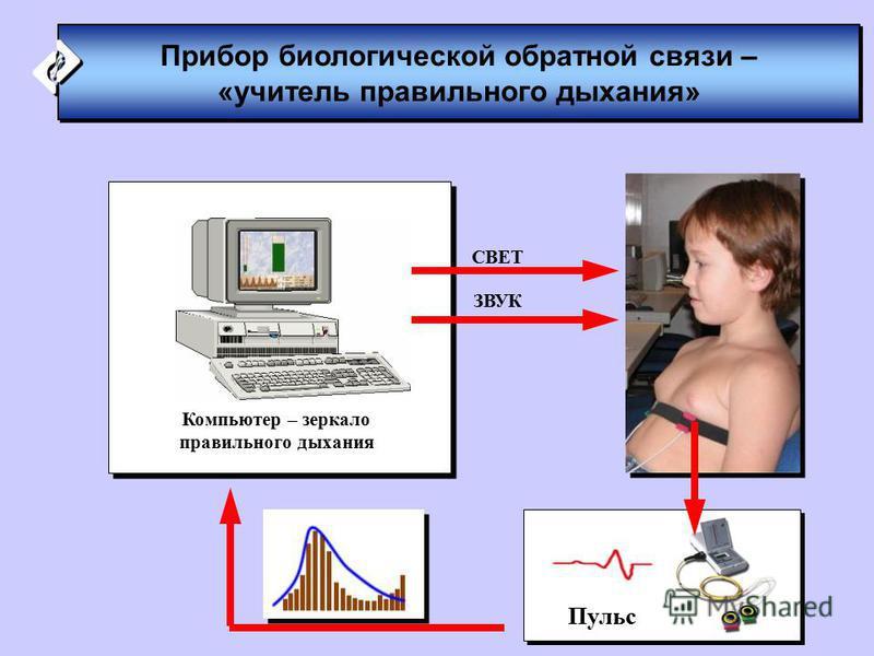 Компьютер – зеркало правильного дыхания Пульс Прибор биологической обратной связи – «учитель правильного дыхания» Прибор биологической обратной связи – «учитель правильного дыхания» СВЕТ ЗВУК