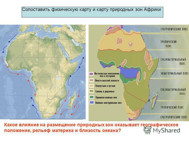 Сопоставить физическую карту и карту природных зон Африки Какое влияние на размещение природных зон оказывает географическое положение, рельеф материка и близость океана?