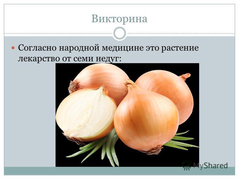 Викторина Согласно народной медицине это растение лекарство от семи недуг: