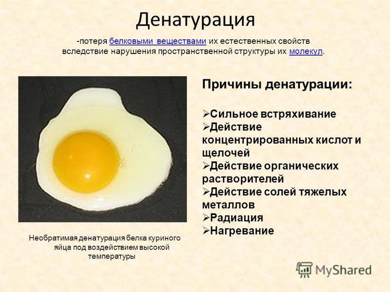 Денатурация Необратимая денатурация белка куриного яйца под воздействием высокой температуры Причины денатурации: Сильное встряхивание Действие концентрированных кислот и щелочей Действие органических растворителей Действие солей тяжелых металлов Рад