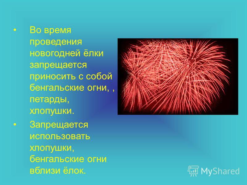 Во время проведения новогодней ёлки запрещается приносить с собой бенгальские огни,, петарды, хлопушки. Запрещается использовать хлопушки, бенгальские огни вблизи ёлок.