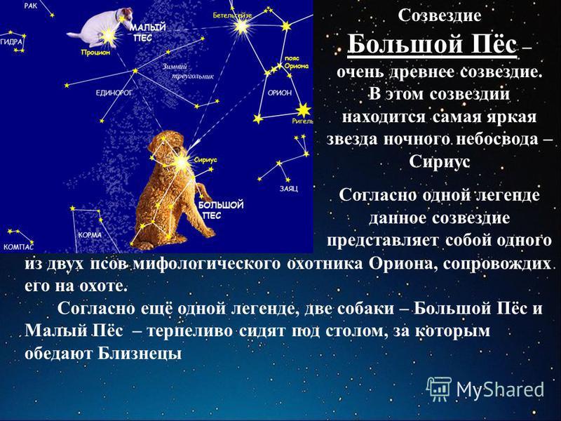 Созвездие Большой Пёс – очень древнее созвездие. В этом созвездии находится самая яркая звезда ночного небосвода – Сириус Согласно одной легенде данное созвездие представляет собой одного из двух псов мифологического охотника Ориона, сопровождих его