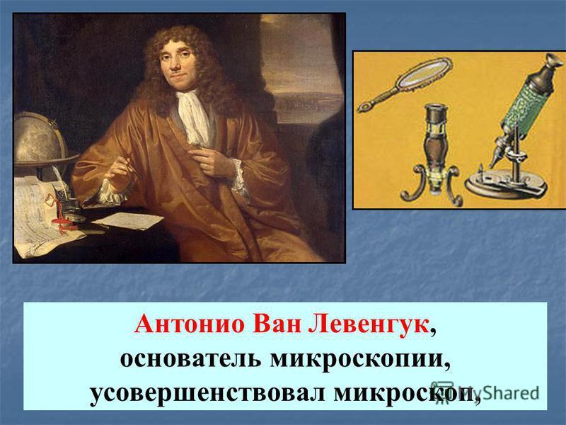 Антонио Ван Левенгук, основатель микроскопии, усовершенствовал микроскоп,