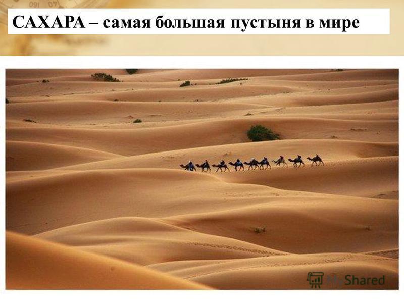 САХАРА – самая большая пустыня в мире