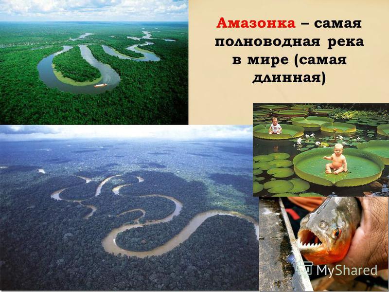 Амазонка – самая полноводная река в мире (самая длинная)