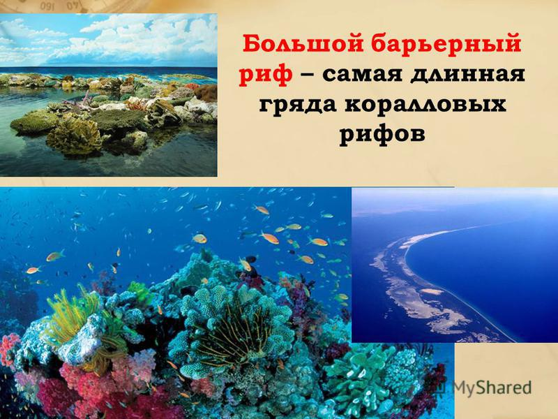 Большой барьерный риф – самая длинная гряда коралловых рифов