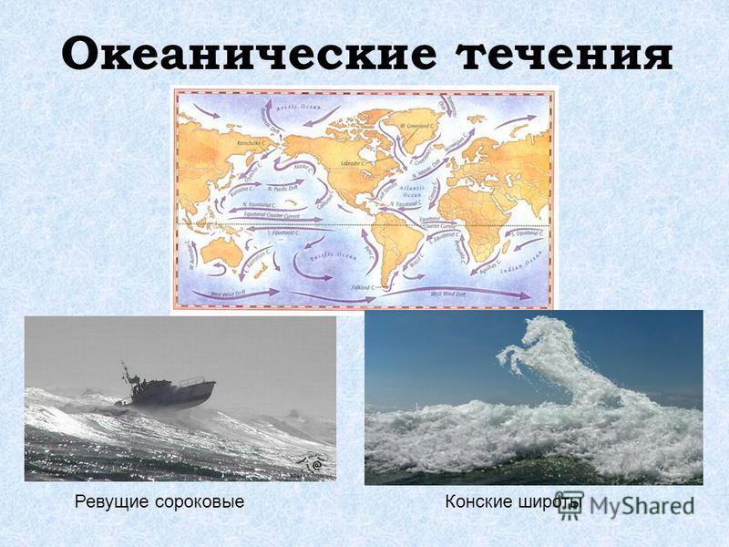 Океанические течения Ревущие сороковые Конские широты