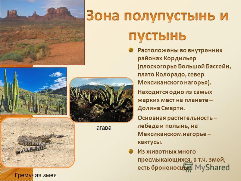 Расположены во внутренних районах Кордильер (плоскогорье Большой Бассейн, плато Колорадо, север Мексиканского нагорья). Находится одно из самых жарких мест на планете – Долина Смерти. Основная растительность – лебеда и полынь, на Мексиканском нагорье