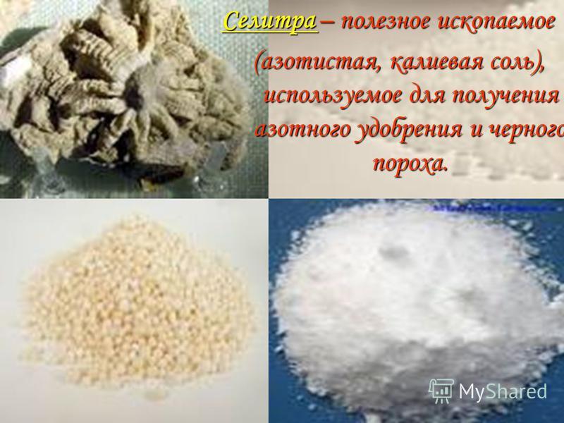 Селитра – полезное ископаемое (азотистая, калиевая соль), используемое для получения азотного удобрения и черного пороха.