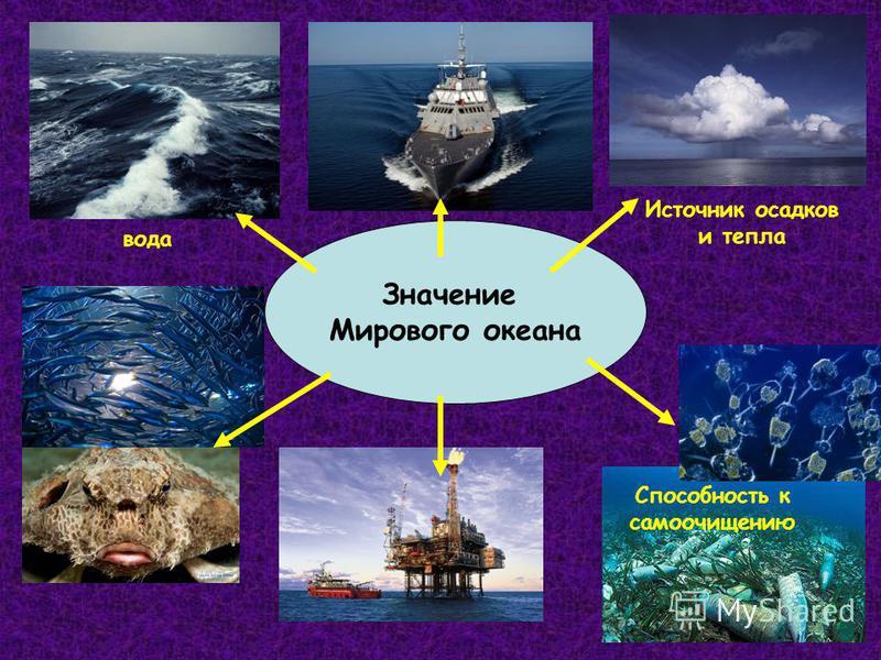 Значение Мирового океана вода Источник осадков и тепла Способность к самоочищению