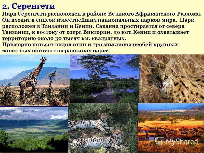 2. Серенгети Парк Серенгети расположен в районе Великого Африканского Разлома. Он входит в список известнейших национальных парков мира. Парк расположен в Танзании и Кении. Саванна простирается от севера Танзании, к востоку от озера Виктории, до юга