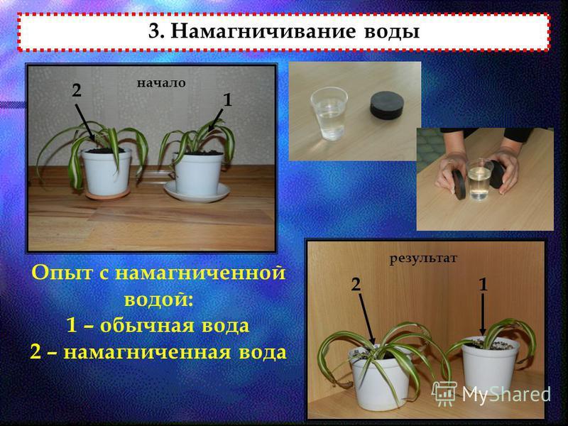3. Намагничивание воды Опыт с намагниченной водой: 1 – обычная вода 2 – намагниченная вода начало результат 2 1 21