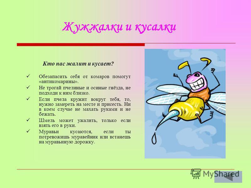 Кто нас жалит и кусает? Обезапасить себя от комаров помогут «антикомарины». Не трогай пчелиные и осиные гнёзда, не подходи к ним близко. Если пчела кружит вокруг тебя, то, нужно замереть на месте и присесть. Ни в коем случае не махать руками и не беж