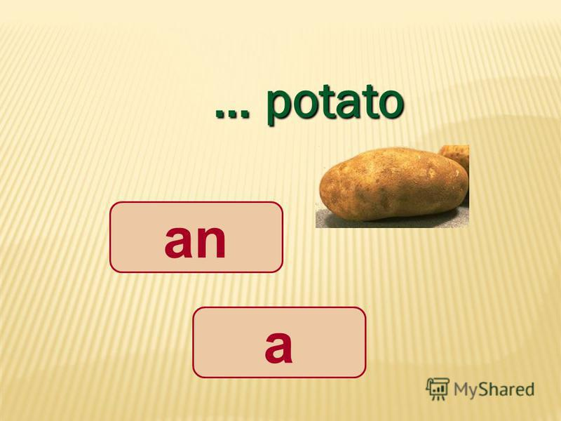 … potato a an