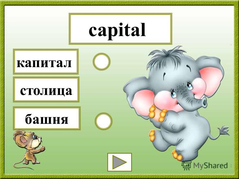 capital башня капитал столица