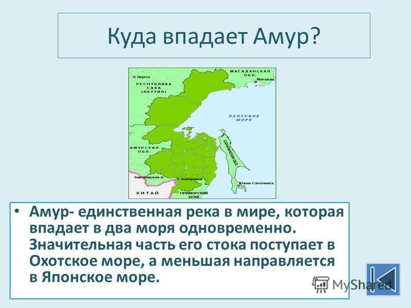 Куда впадает Амур? Амур- единственная река в мире, которая впадает в два моря одновременно. Значительная часть его стока поступает в Охотское море, а меньшая направляется в Японское море.