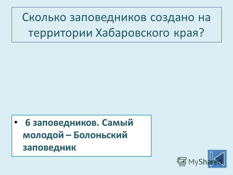 Сколько заповедников создано на территории Хабаровского края? 6 заповедников. Самый молодой – Болоньский заповедник