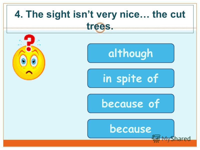 4. The sight isnt very nice… the cut trees. although in spite of because of because