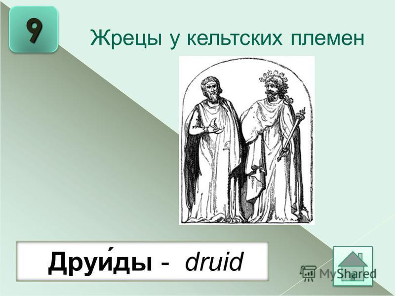 9 Друи́ты - druid Жрецы у кельтских племен