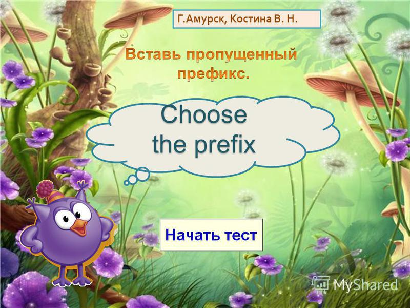 Г. Амурск, Костина В. Н. Choose the prefix
