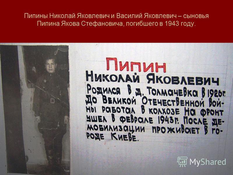 Пипины Николай Яковлевич и Василий Яковлевич – сыновья Пипина Якова Стефановича, погибшего в 1943 году.