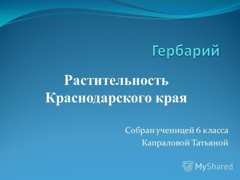 Собран ученицей 6 класса Капраловой Татьяной Растительность Краснодарского края