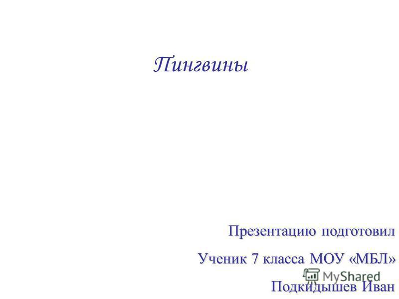 Пингвины Презентацию подготовил Ученик 7 класса МОУ «МБЛ» Подкидышев Иван