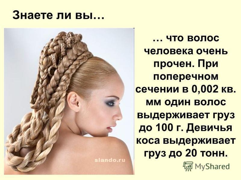 Волосы интересные факты