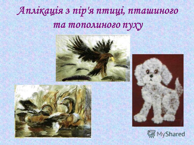 Аплікація з пір'я птиці, пташиного та тополиного пуху