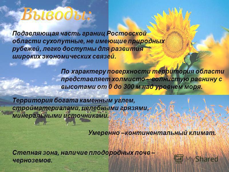 Подавляющая часть границ Ростовской области сухопутные, не имеющие природных рубежей, легко доступны для развития широких экономических связей. По характеру поверхности территория области представляет холмисто – волнистую равнину с высотами от 0 до 3