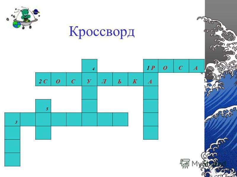 Кроссворд 4 1 РО С А 2 СО С У Л Ь К А 5 3