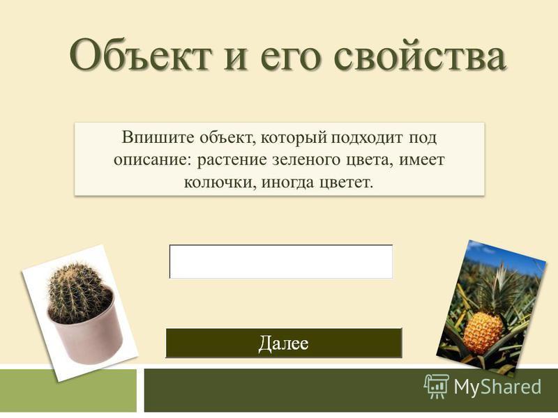 Объект и его свойства Впишите объект, который подходит под описание: растение зеленого цвета, имеет колючки, иногда цветет.