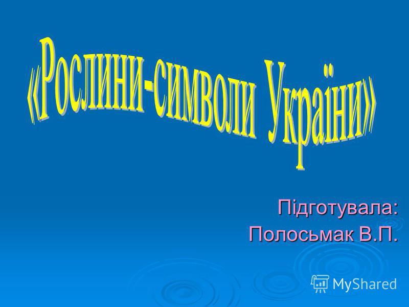 Підготувала: Полосьмак В.П.