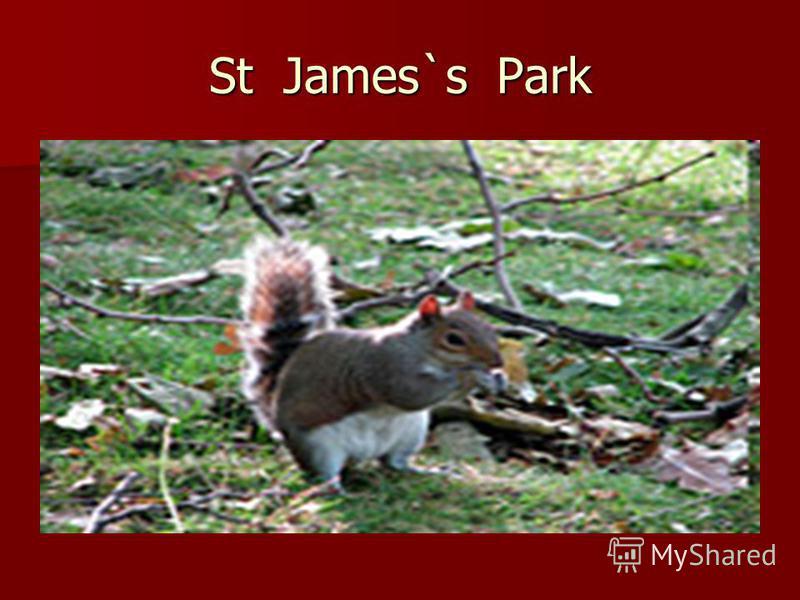 St James`s Park