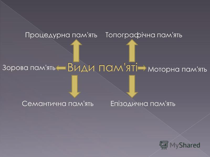 Зорова пам'ять Моторна пам'ять Епізодична пам'ятьСемантична пам'ять Процедурна пам'ятьТопографічна пам'ять