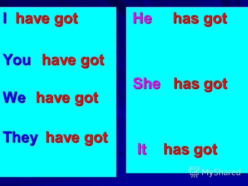 I have got You have got We have got They have got He has got He has got She has got She has got It has got It has got