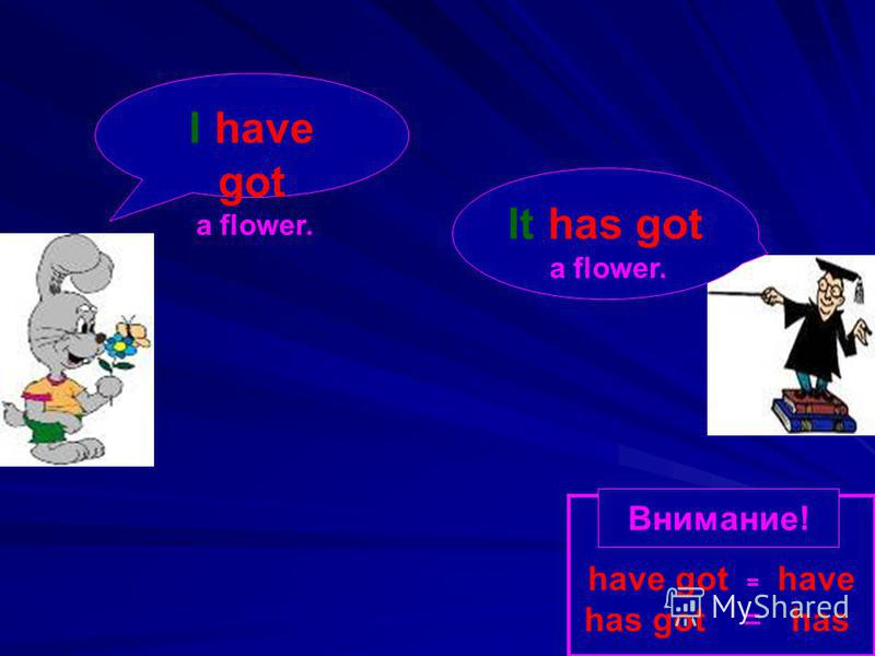 It has got a flower. I have got a flower. have got = have has got = has Внимание!