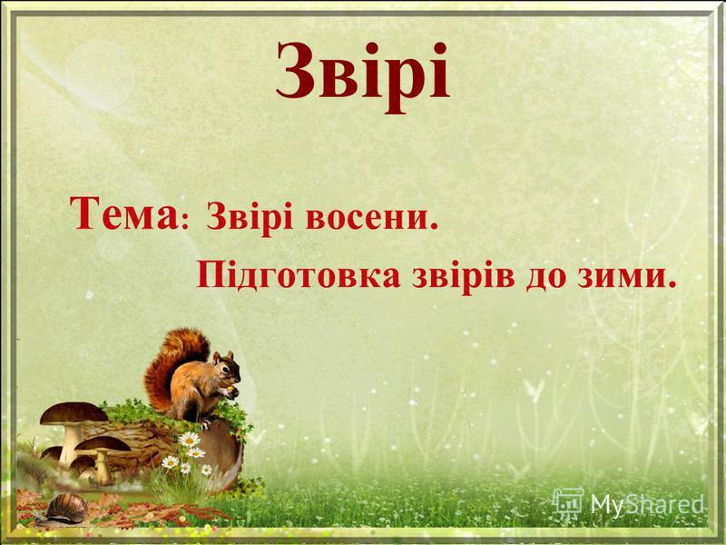Звірі Тема : Звірі восени. Підготовка звірів до зими.