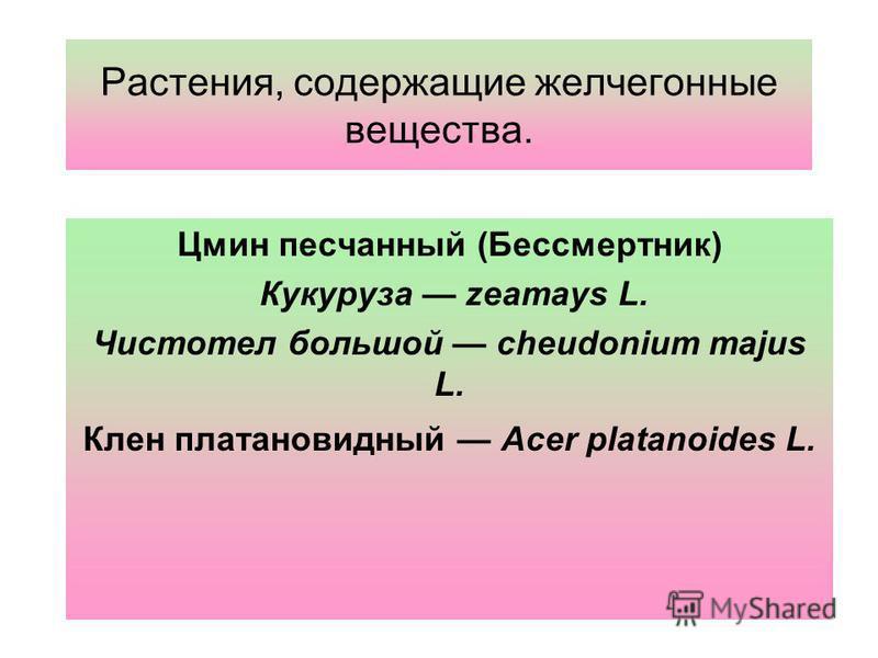 Растения, содержащие желчегонные вещества. Цмин песчаныйй (Бессмертник) Кукуруза zeamays L. Чистотел большой cheudonium majus L. Клен платановидный Acer platanoides L.