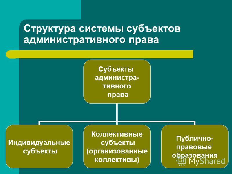 Структура системы субъектов административного права Субъекты административного права Индивидуальные субъекты Коллективные субъекты (организованные коллективы) Публично- правовые образования